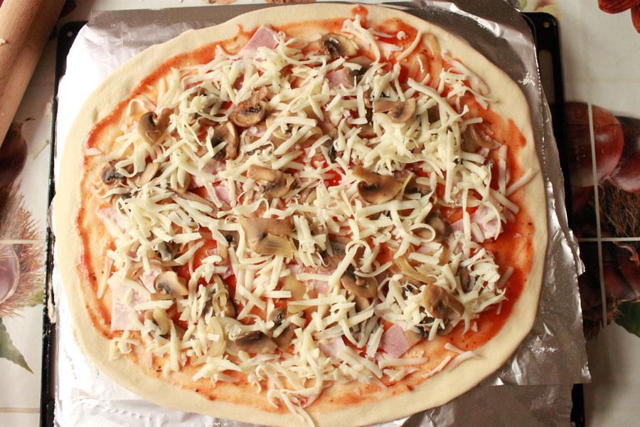 Рецепты пиццы в домашних условиях из грибов 366